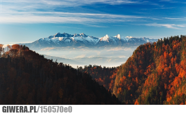 Pieniny, Kluszkowce, Tatra Mountains, Poland  № 8125 бесплатно