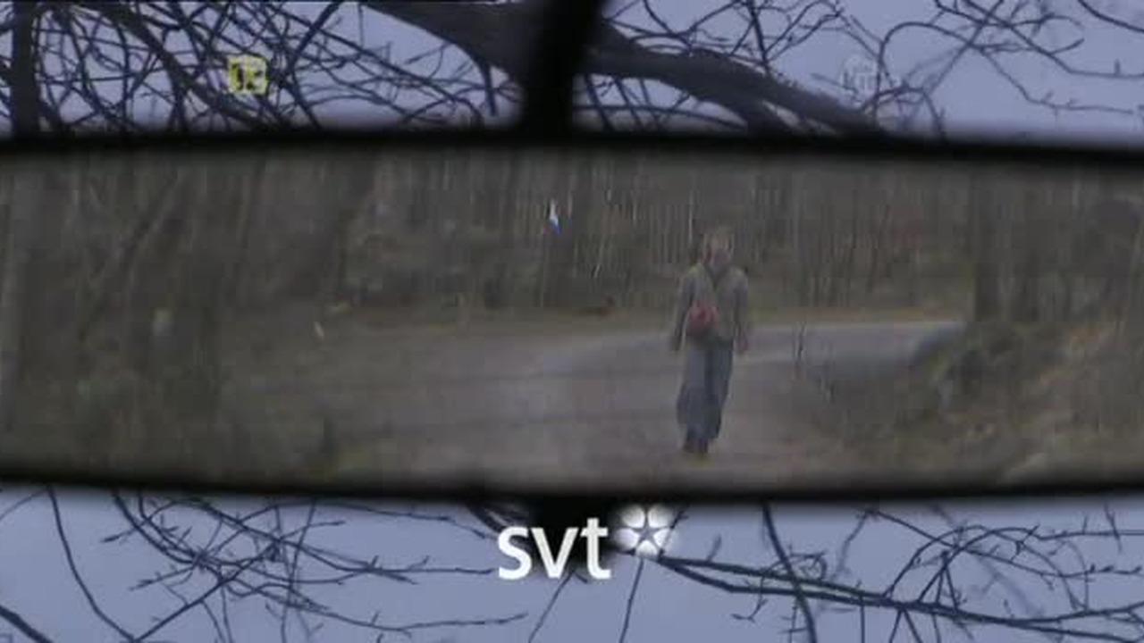 Kaznodzieja / Predikanten (2007) PL