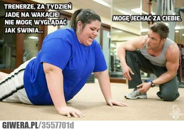 Trening,siłownia,otyłość,heheszki