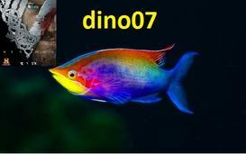 dino07