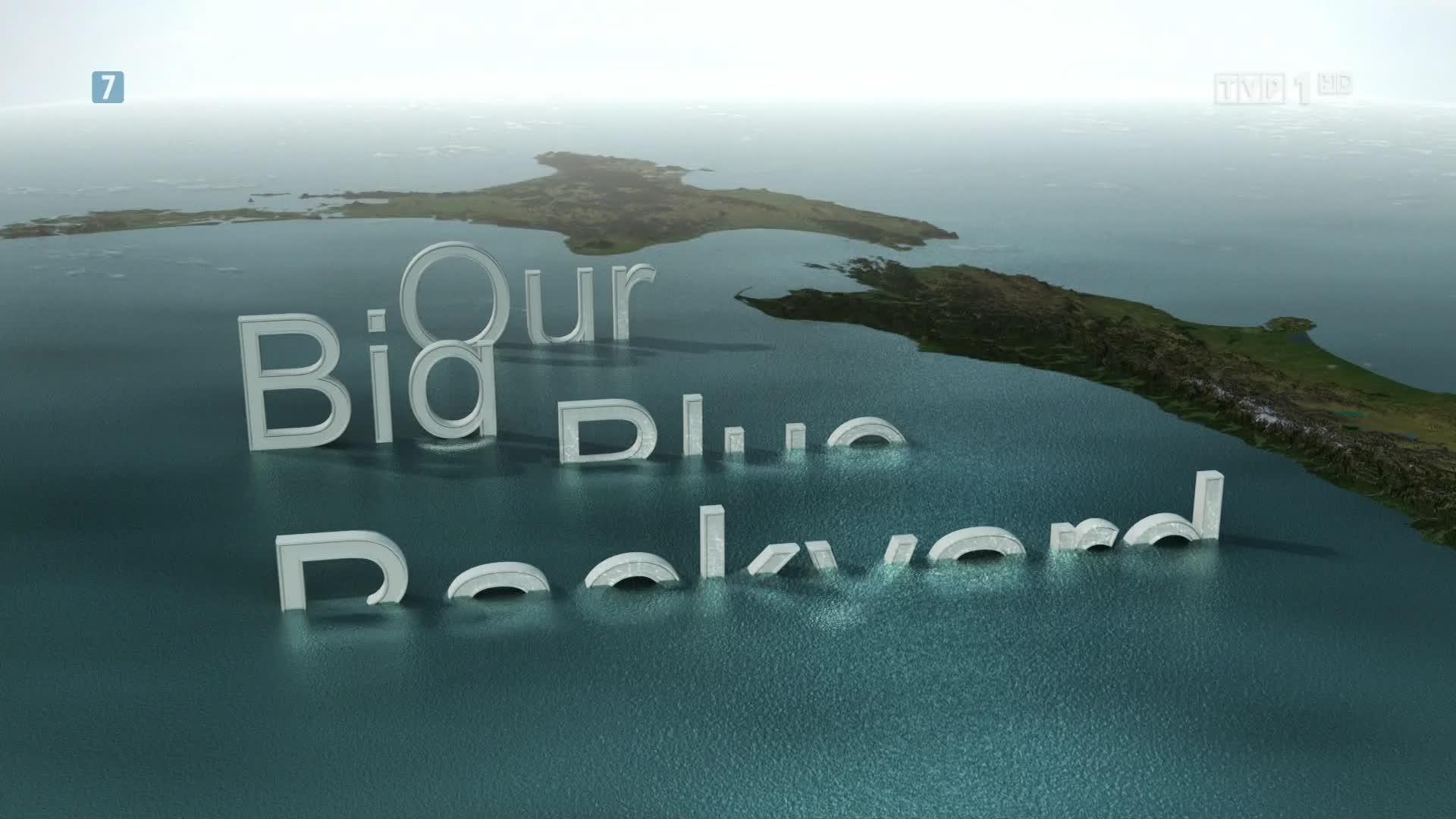 Strzelanina W Nowej Zelandii Film Image: U Wybrzeży Nowej Zelandii. Zatoki Regionu Norbours. 1080p