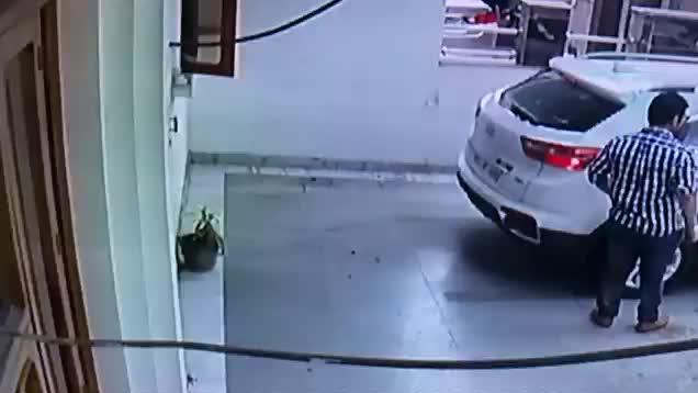 Profesjonalny asystent parkowania