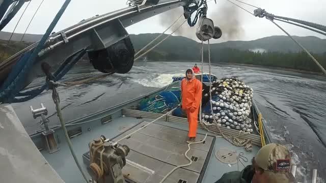 Nietypowa sytuacja na morzu