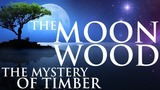THE MOON WOOD - HIDDEN KNOWLEDGE OF TIMBER