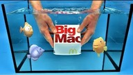 Opening Big Mac in the water I Experiment